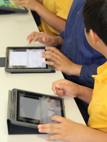 rostrata schools online